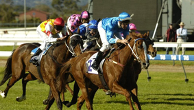 How to bet on horse races successfully